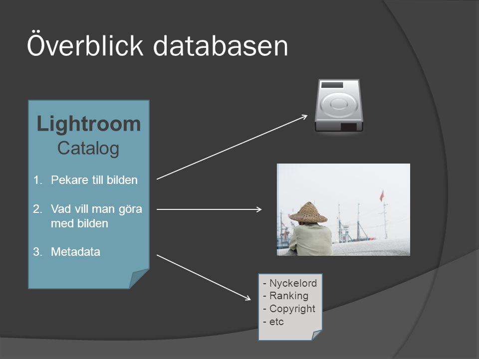 Överblick databasen Lightroom Catalog 1.Pekare till bilden 2.Vad vill man göra med bilden 3.Metadata - Nyckelord - Ranking - Copyright - etc