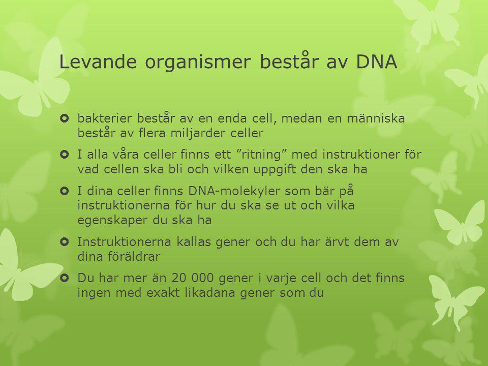 Levande organismer består av DNA  bakterier består av en enda cell, medan en människa består av flera miljarder celler  I alla våra celler finns ett