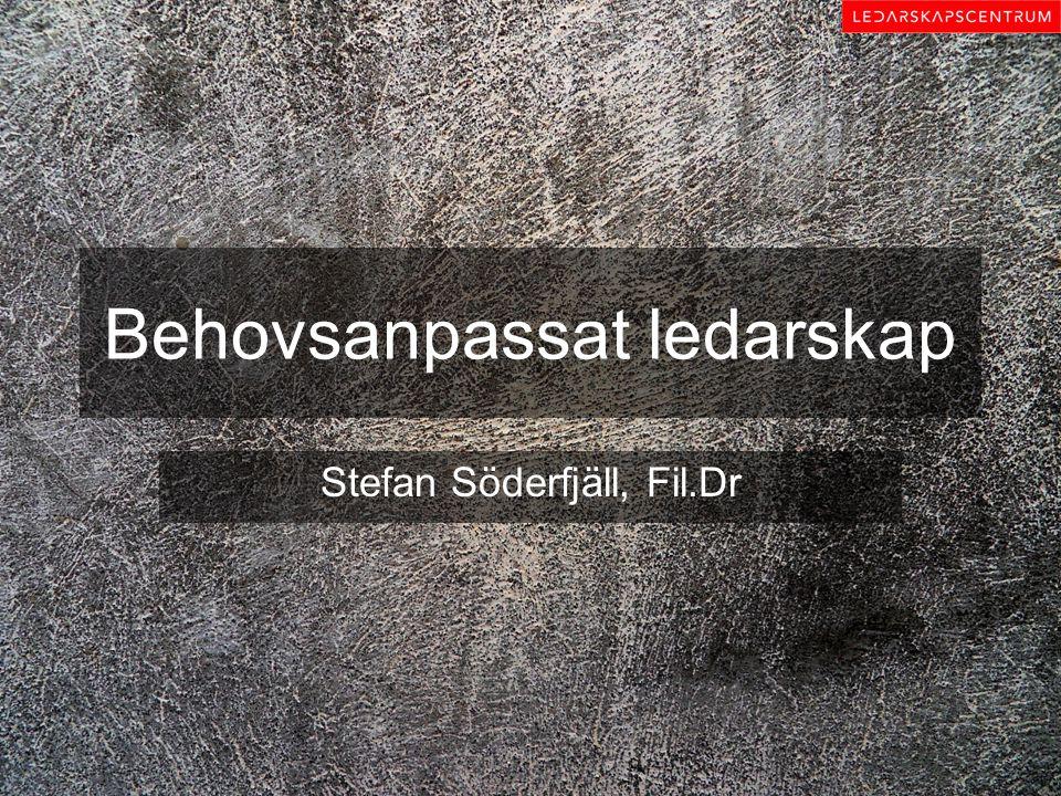 Behovsanpassat ledarskap Stefan Söderfjäll, Fil.Dr