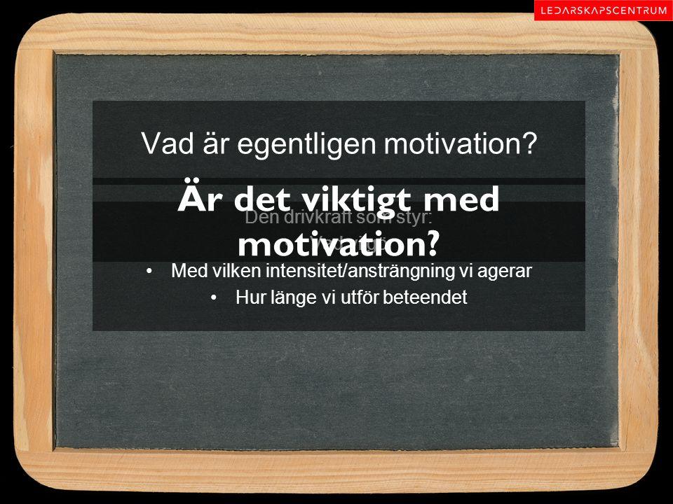 Vad är egentligen motivation? Den drivkraft som styr: Vad vi gör Med vilken intensitet/ansträngning vi agerar Hur länge vi utför beteendet Är det vikt
