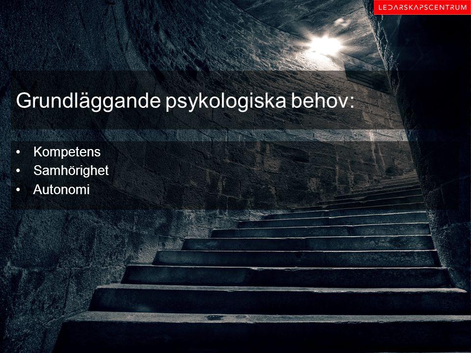 Grundläggande psykologiska behov: Kompetens Samhörighet Autonomi