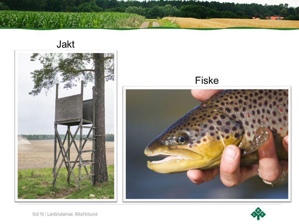 Sid 10 | Lantbrukarnas Riksförbund Jakt Fiske