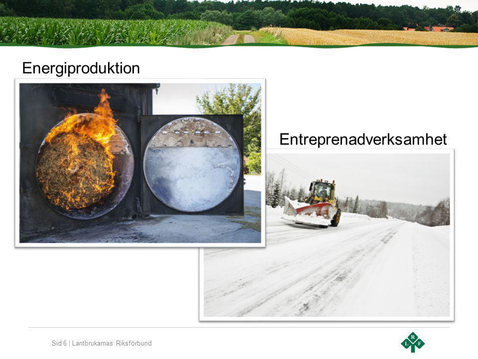 Sid 6 | Lantbrukarnas Riksförbund Energiproduktion Entreprenadverksamhet