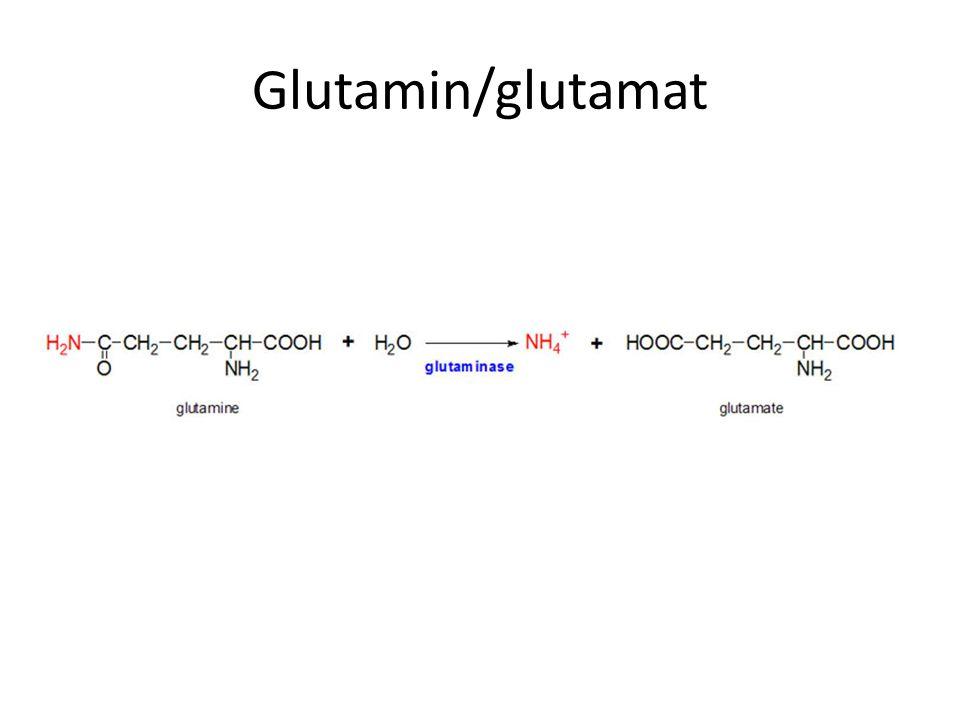 Glutamin/glutamat