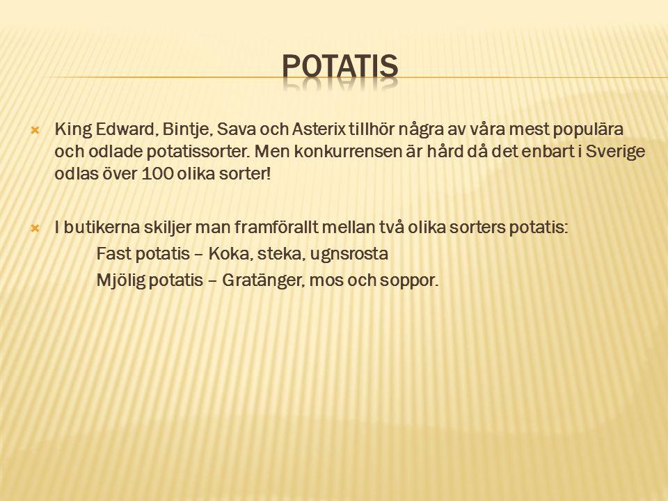  King Edward, Bintje, Sava och Asterix tillhör några av våra mest populära och odlade potatissorter. Men konkurrensen är hård då det enbart i Sverige