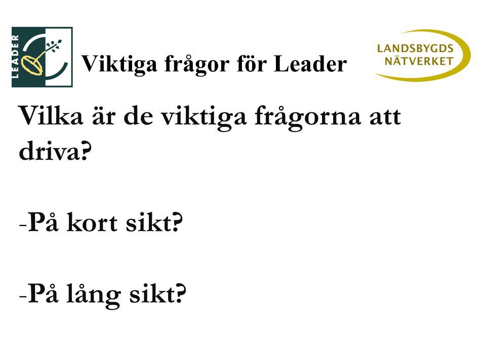 Viktiga frågor för Leader Vilka är de viktiga frågorna att driva -På kort sikt -På lång sikt