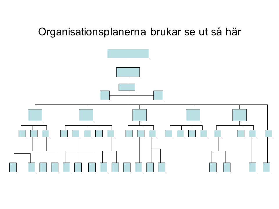 Organisationsplanerna brukar se ut så här