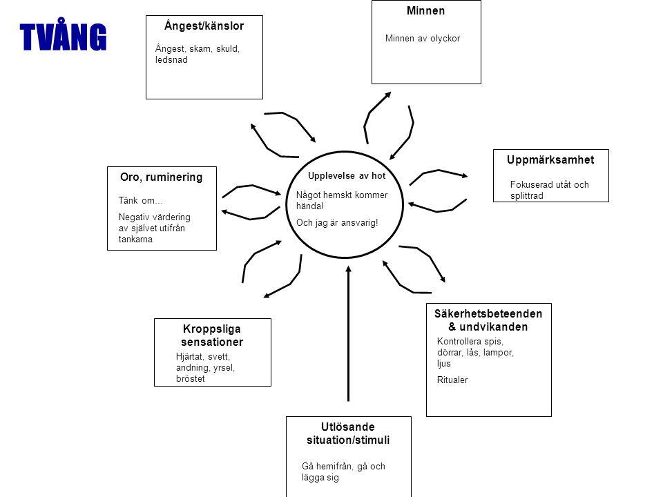 Kroppsliga sensationer Oro, ruminering Ångest/känslor Minnen Utlösande situation/stimuli Säkerhetsbeteenden & undvikanden Upplevelse av hot Uppmärksam
