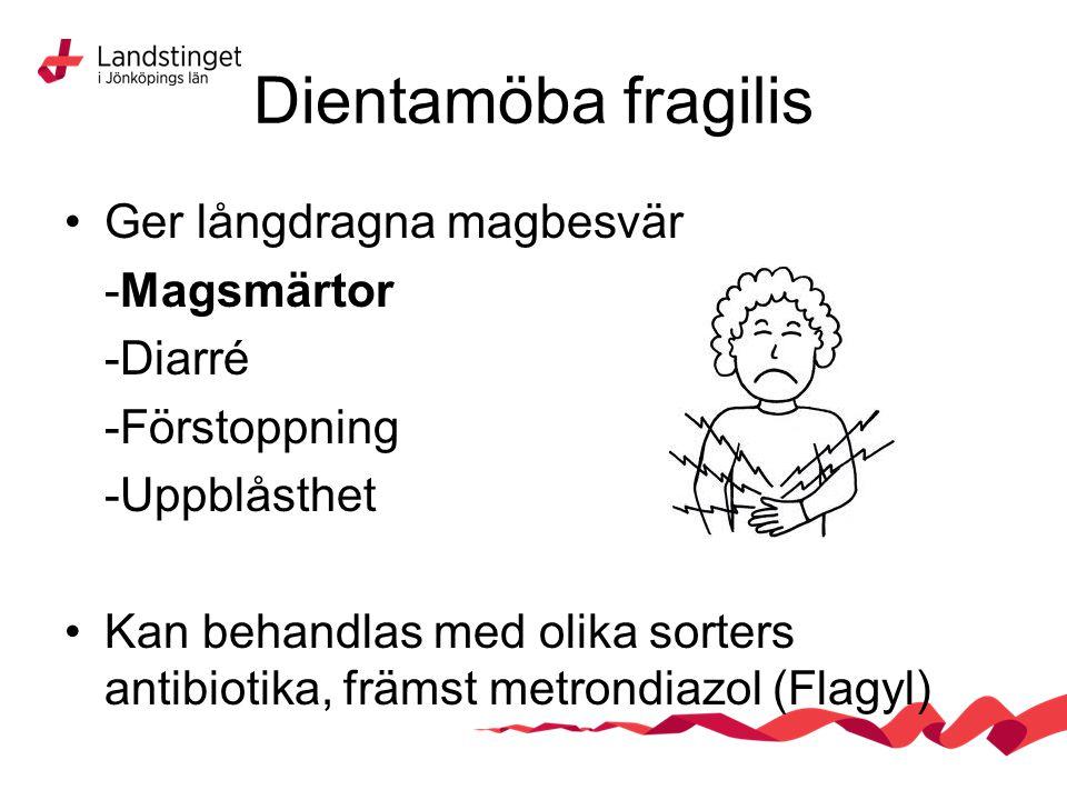 Dientamöba fragilis Ger långdragna magbesvär -Magsmärtor -Diarré -Förstoppning -Uppblåsthet Kan behandlas med olika sorters antibiotika, främst metron