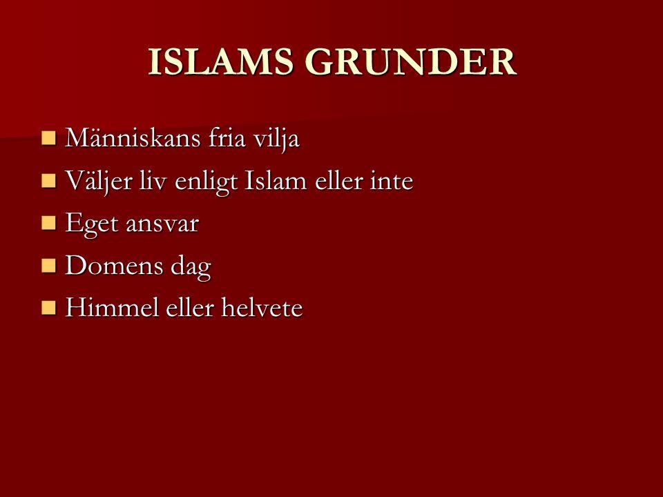 ISLAMS GRUNDER Människans fria vilja Människans fria vilja Väljer liv enligt Islam eller inte Väljer liv enligt Islam eller inte Eget ansvar Eget ansvar Domens dag Domens dag Himmel eller helvete Himmel eller helvete