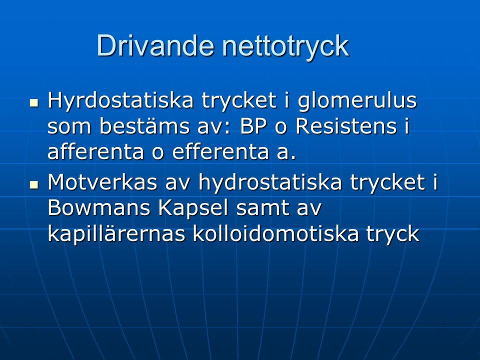 Drivande nettotryck Hyrdostatiska trycket i glomerulus som bestäms av: BP o Resistens i afferenta o efferenta a. Hyrdostatiska trycket i glomerulus so
