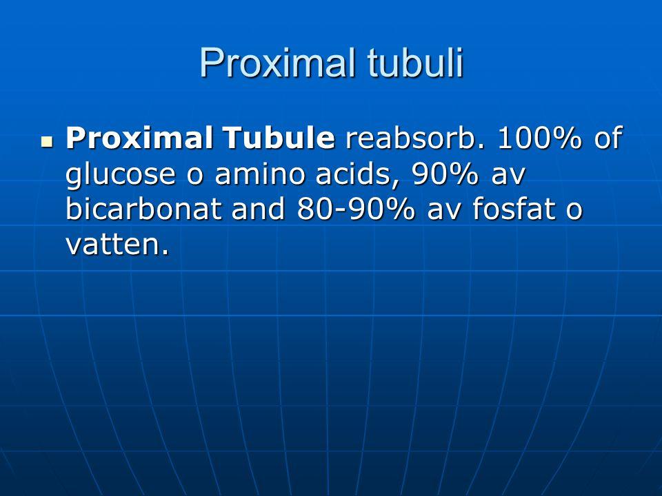 Proximal tubuli Proximal Tubule reabsorb. 100% of glucose o amino acids, 90% av bicarbonat and 80-90% av fosfat o vatten. Proximal Tubule reabsorb. 10