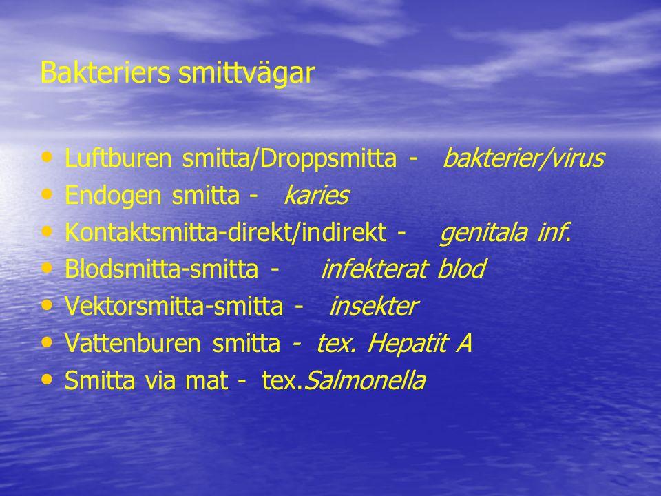 Bakteriers smittvägar Luftburen smitta/Droppsmitta - bakterier/virus Endogen smitta - karies Kontaktsmitta-direkt/indirekt - genitala inf.