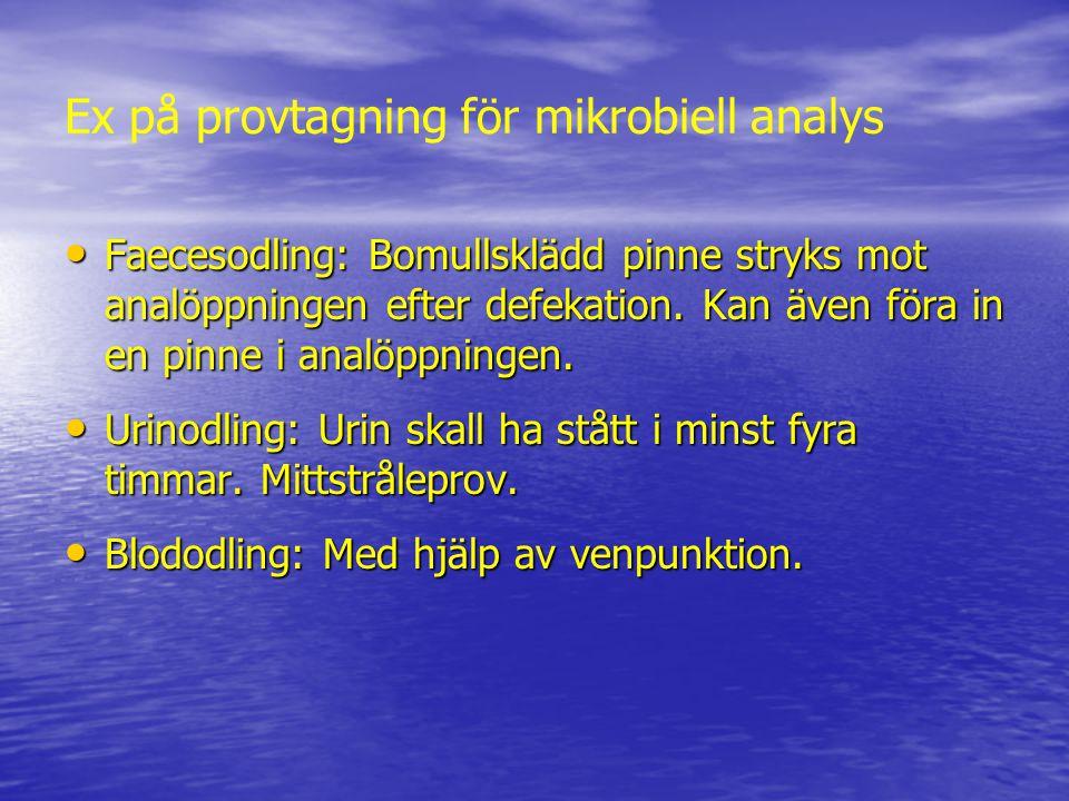 Ex på provtagning för mikrobiell analys Faecesodling: Bomullsklädd pinne stryks mot analöppningen efter defekation. Kan även föra in en pinne i analöp