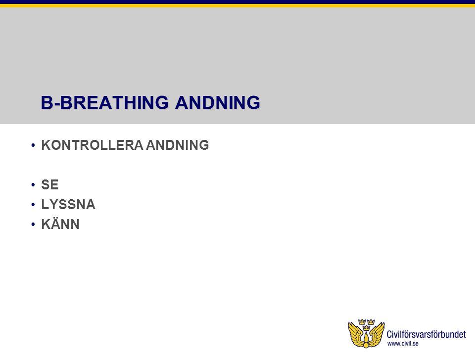 B-BREATHING ANDNING KONTROLLERA ANDNING SE LYSSNA KÄNN