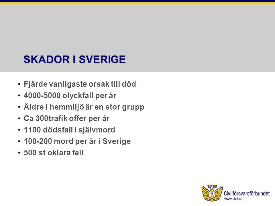 SKADOR I SVERIGE Fjärde vanligaste orsak till död 4000-5000 olyckfall per år Äldre i hemmiljö är en stor grupp Ca 300trafik offer per år 1100 dödsfall