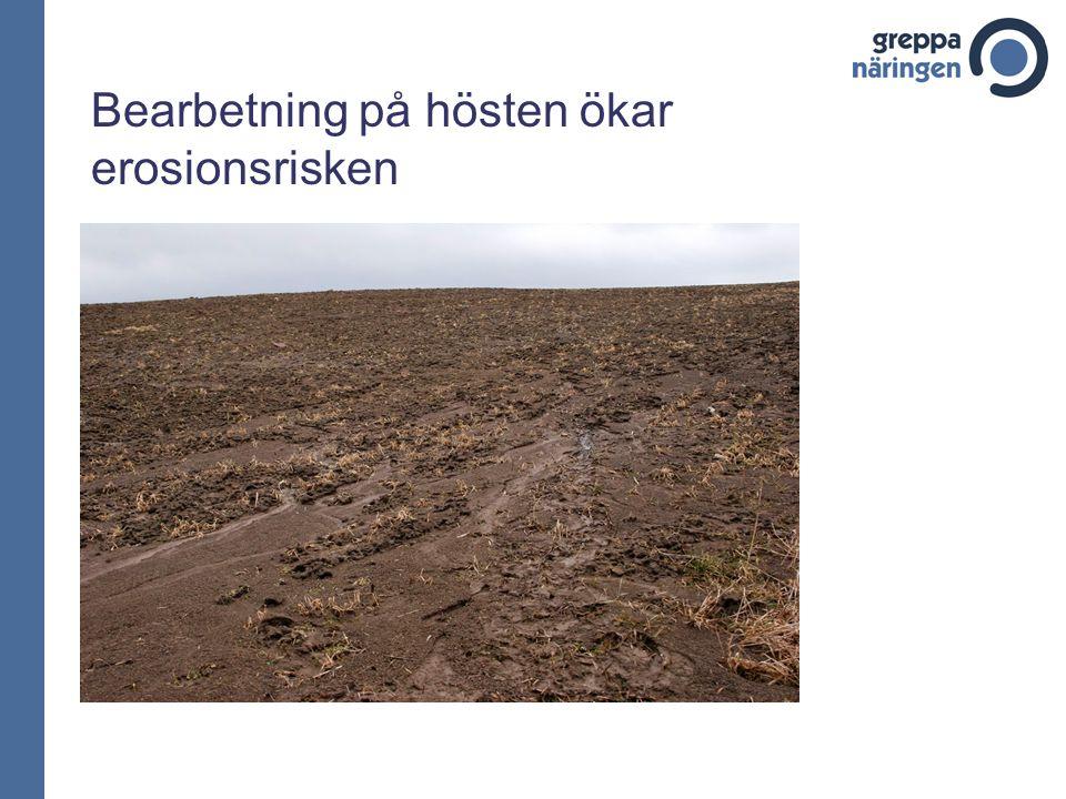 Bearbetning på hösten ökar erosionsrisken
