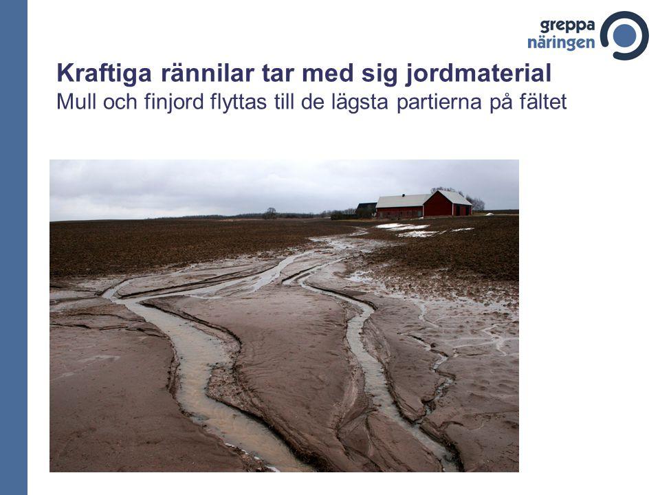 Kraftiga rännilar tar med sig jordmaterial Mull och finjord flyttas till de lägsta partierna på fältet