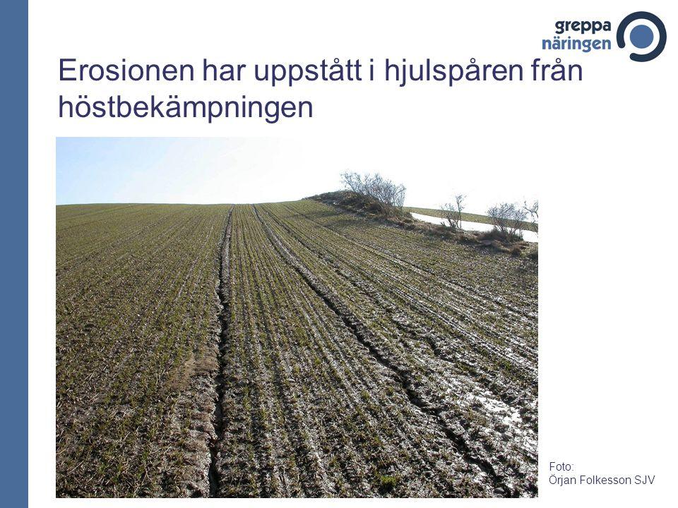 Erosionen har uppstått i hjulspåren från höstbekämpningen Foto: Örjan Folkesson SJV