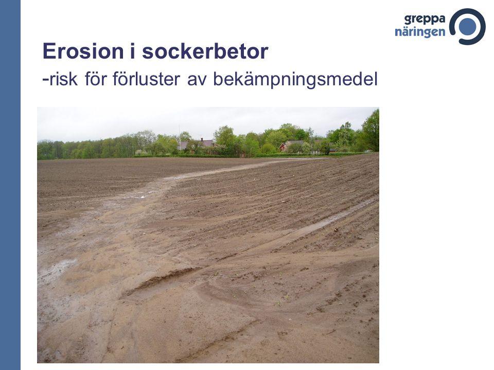 Erosion i sockerbetor - risk för förluster av bekämpningsmedel