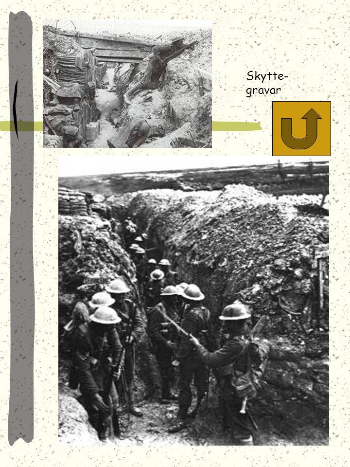 Stupade efter slaget vid Somme Ny vapenteknologi ledde till väldiga offer i människoliv