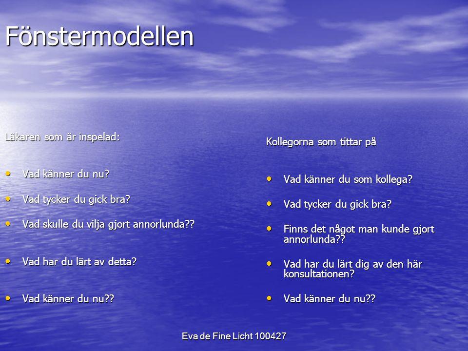 Eva de Fine Licht 100427 Fönstermodellen Läkaren som är inspelad: Vad känner du nu.