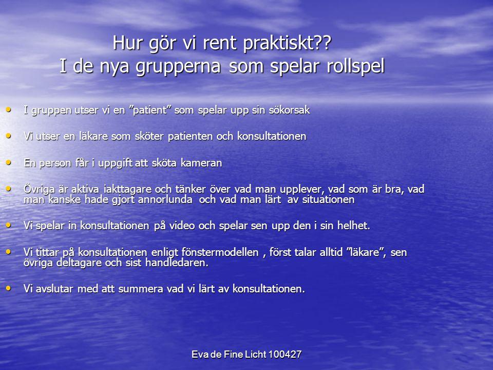 Eva de Fine Licht 100427 Hur gör vi rent praktiskt?.