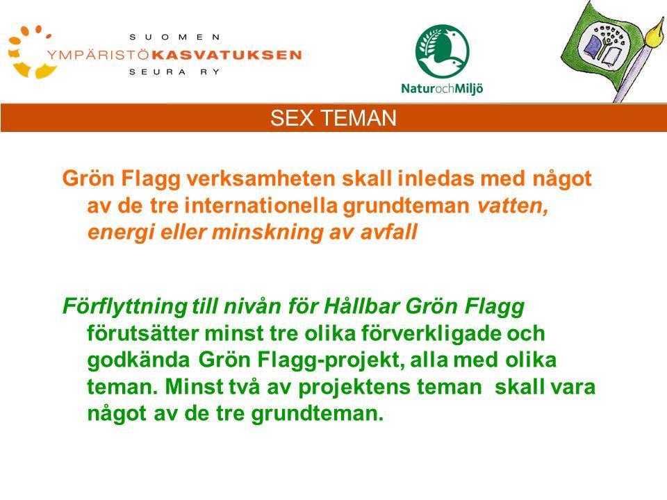 Grön Flagg verksamheten skall inledas med något av de tre internationella grundteman vatten, energi eller minskning av avfall Förflyttning till nivån för Hållbar Grön Flagg förutsätter minst tre olika förverkligade och godkända Grön Flagg-projekt, alla med olika teman.