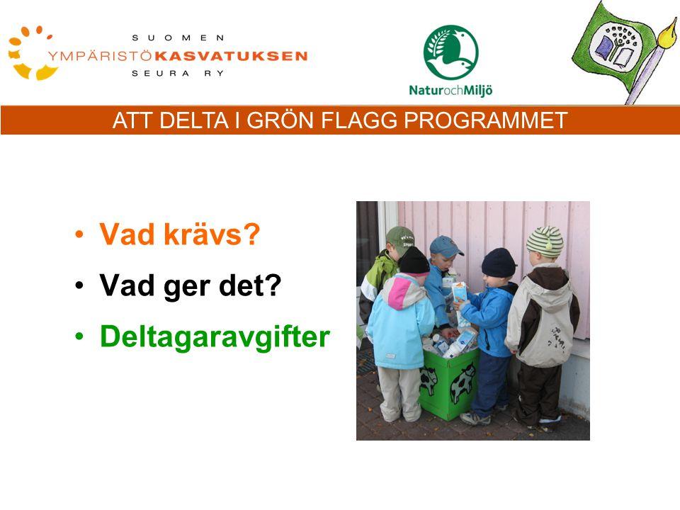 ATT DELTA I GRÖN FLAGG PROGRAMMET Vad krävs Vad ger det Deltagaravgifter
