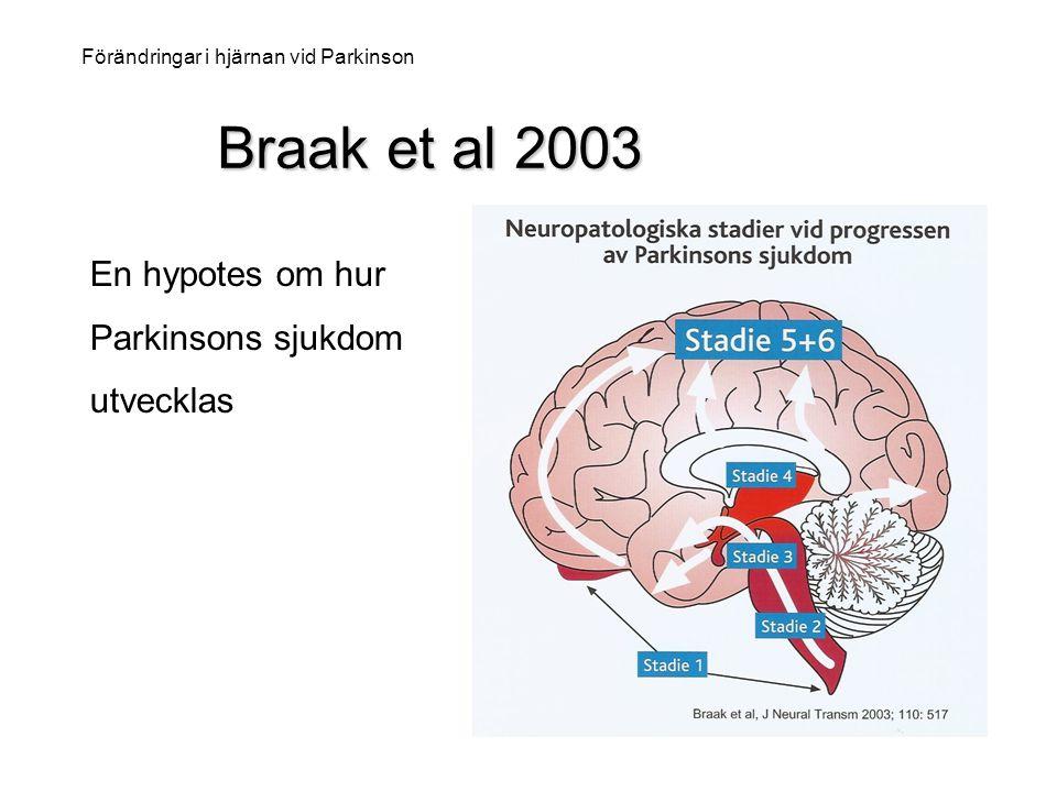 Braak et al 2003 Braak et al 2003 Förändringar i hjärnan vid Parkinson En hypotes om hur Parkinsons sjukdom utvecklas