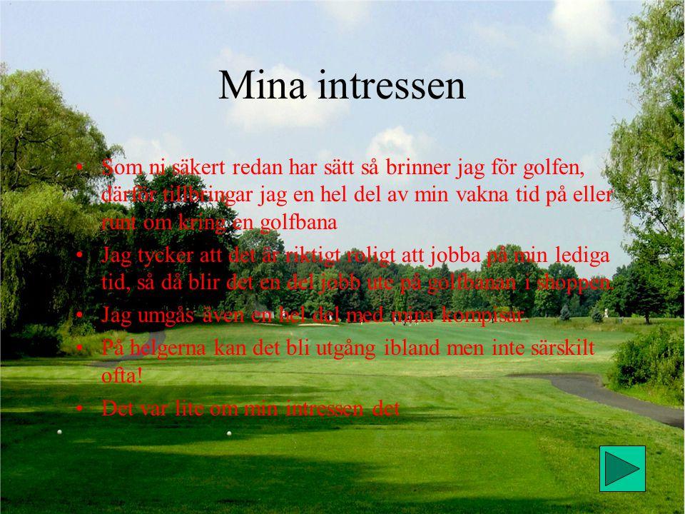 Mina intressen Som ni säkert redan har sätt så brinner jag för golfen, därför tillbringar jag en hel del av min vakna tid på eller runt om kring en golfbana Jag tycker att det är riktigt roligt att jobba på min lediga tid, så då blir det en del jobb ute på golfbanan i shoppen.
