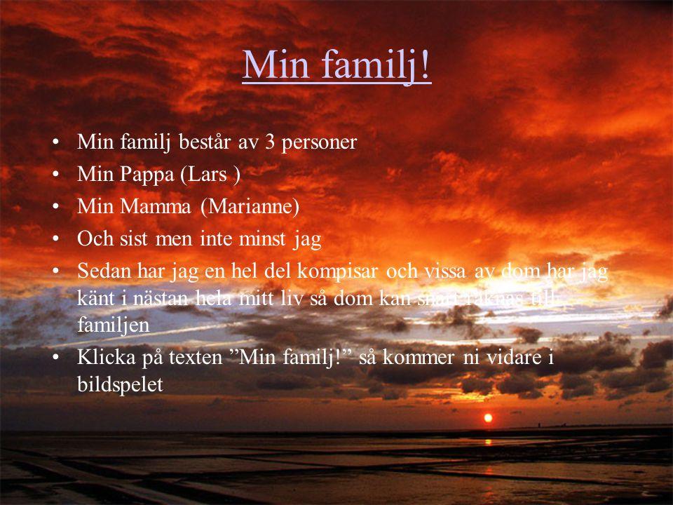 Min familj! Min familj består av 3 personer Min Pappa (Lars ) Min Mamma (Marianne) Och sist men inte minst jag Sedan har jag en hel del kompisar och v