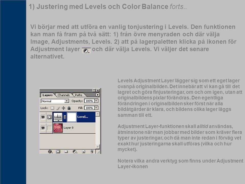 När fotot är färdigbehandlat vill vi kanske skiva ut den, trycka den, eller publicera den på webben i Jpeg-formatet.