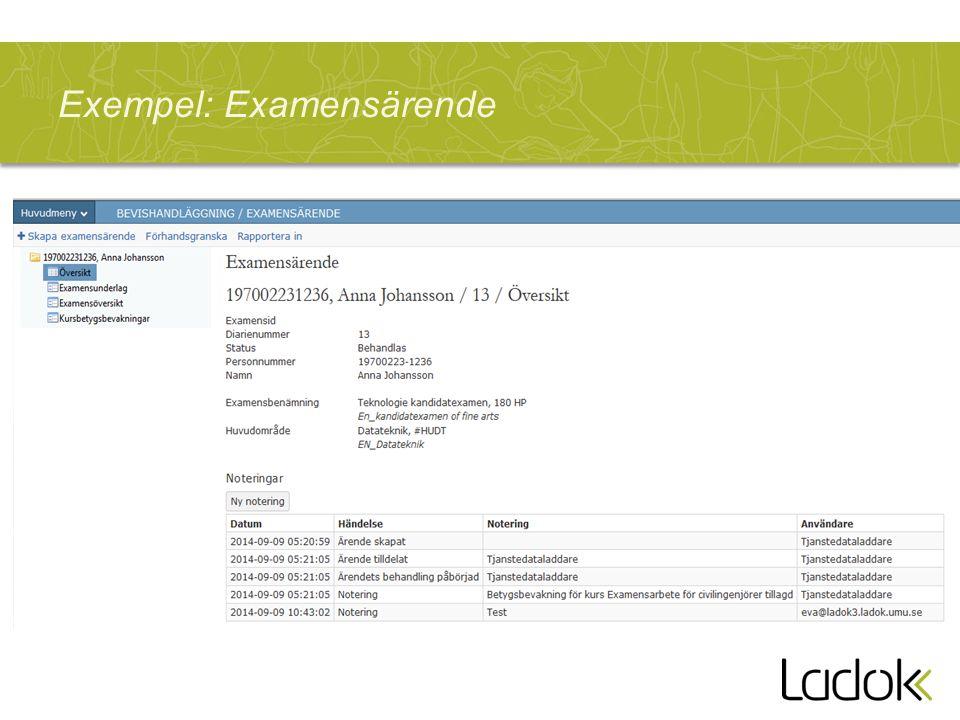 Exempel: Examensärende