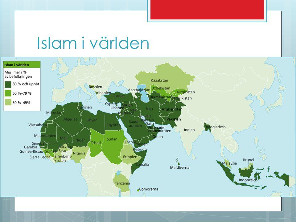  Det finns drygt 1,3 miljarder muslimer i världen.