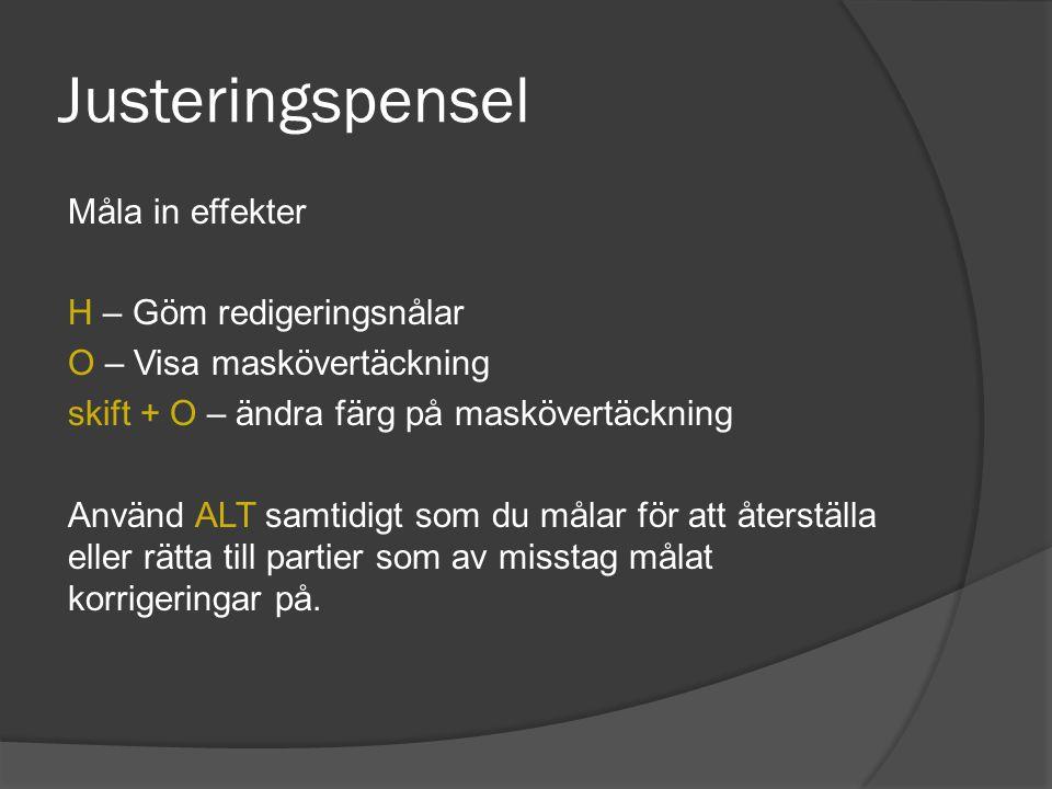 Justeringspensel Måla in effekter H – Göm redigeringsnålar O – Visa maskövertäckning skift + O – ändra färg på maskövertäckning Använd ALT samtidigt s