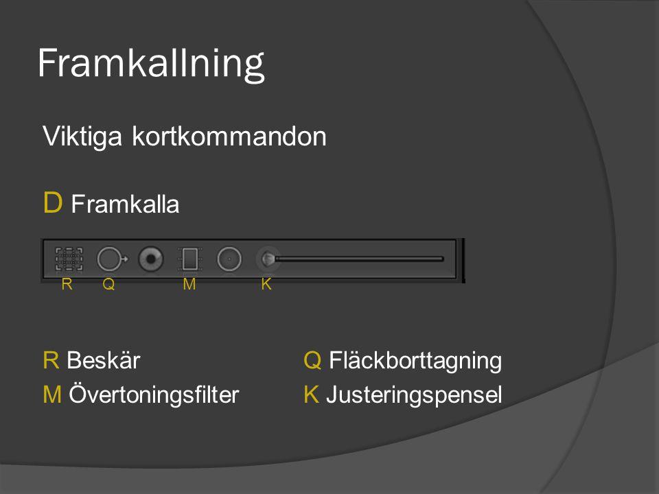 Framkallning Viktiga kortkommandon D Framkalla R BeskärQ Fläckborttagning M Övertoningsfilter K Justeringspensel RQMK