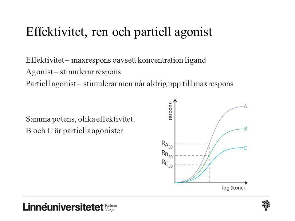 Effektivitet, ren och partiell agonist Effektivitet – maxrespons oavsett koncentration ligand Agonist – stimulerar respons Partiell agonist – stimuler