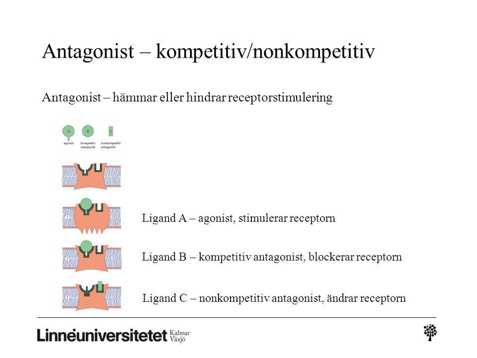 Antagonist – kompetitiv/nonkompetitiv Antagonist – hämmar eller hindrar receptorstimulering Ligand A – agonist, stimulerar receptorn Ligand B – kompet