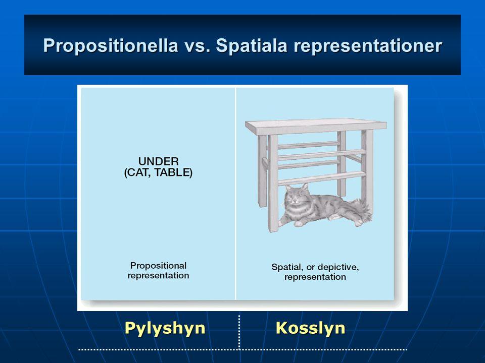 Propositionella vs. Spatiala representationer Pylyshyn Kosslyn
