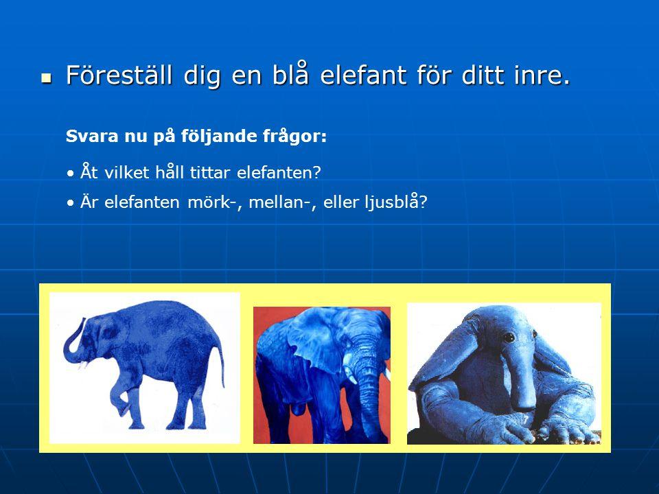 Föreställ dig en blå elefant för ditt inre.Föreställ dig en blå elefant för ditt inre.