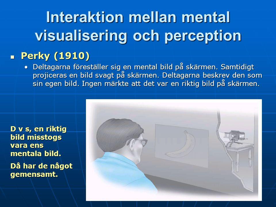 Interaktion mellan mental visualisering och perception Perky (1910) Perky (1910) Deltagarna föreställer sig en mental bild på skärmen.