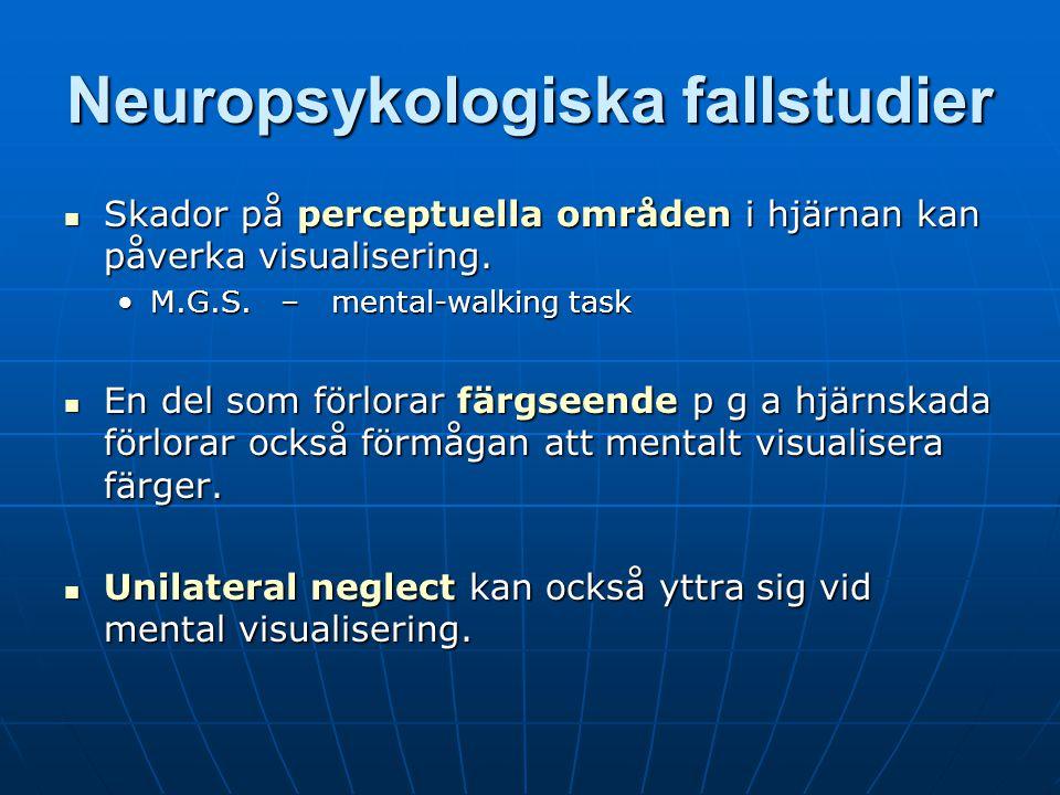 Neuropsykologiska fallstudier Skador på perceptuella områden i hjärnan kan påverka visualisering.