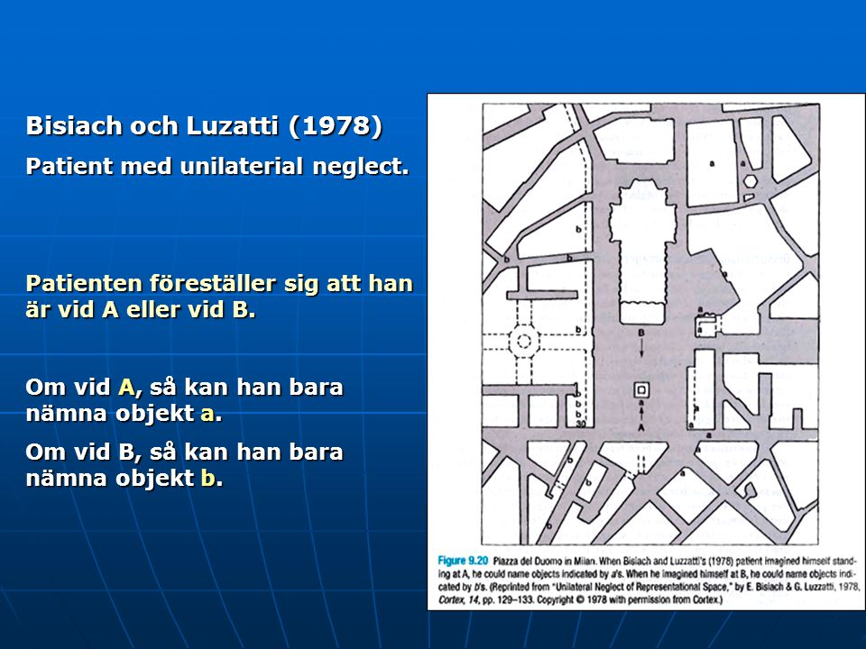 Bisiach och Luzatti (1978) Patient med unilaterial neglect.
