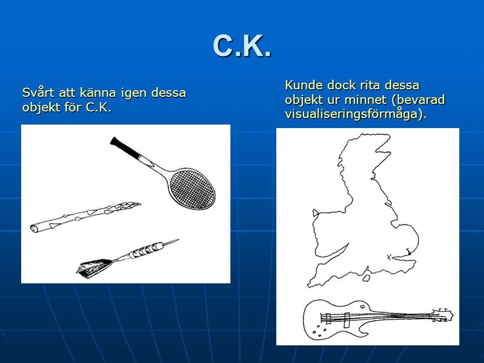C.K.Svårt att känna igen dessa objekt för C.K.