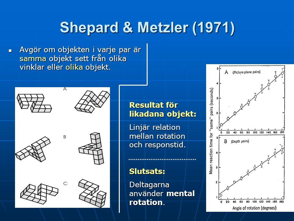 Shepard & Metzler (1971) Avgör om objekten i varje par är samma objekt sett från olika vinklar eller olika objekt.