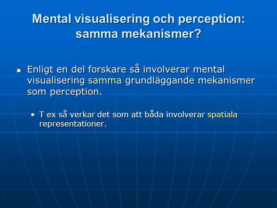 Mental visualisering och perception: samma mekanismer.