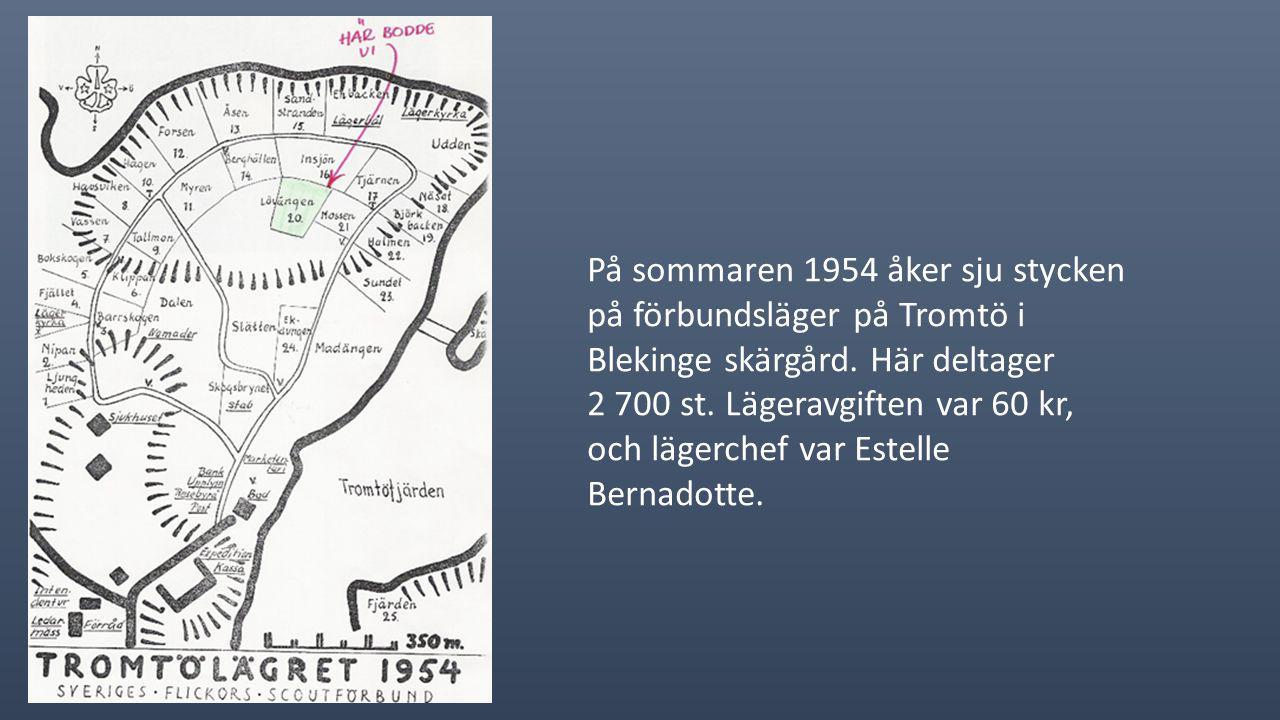 På sommaren 1954 åker sju stycken på förbundsläger på Tromtö i Blekinge skärgård.
