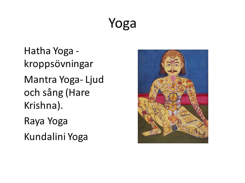 Yoga Hatha Yoga - kroppsövningar Mantra Yoga- Ljud och sång (Hare Krishna). Raya Yoga Kundalini Yoga