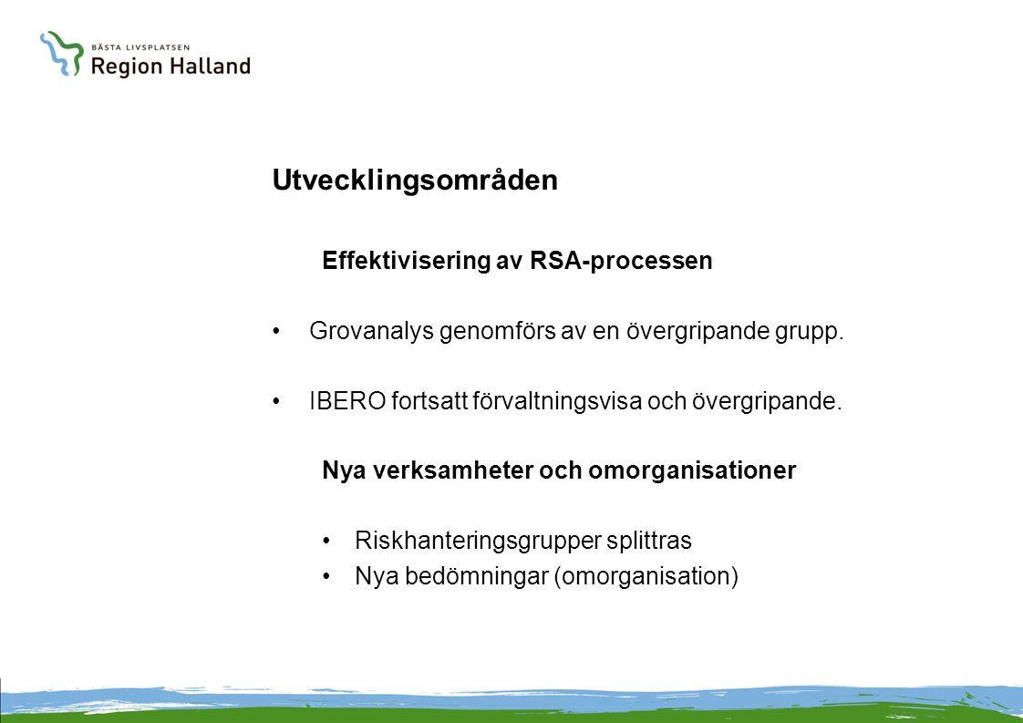 Utvecklingsområden Effektivisering av RSA-processen Grovanalys genomförs av en övergripande grupp.